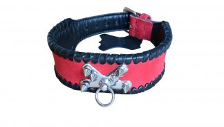 leather collar with spines