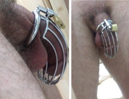 cage penis metal
