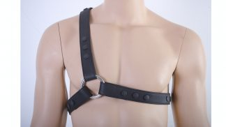 BSMD harness 3 leather stripes
